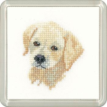 Golden Labrador Puppy Coaster Kit