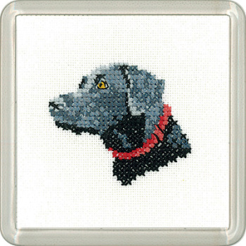 Black Labrador Coaster Kit