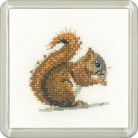 Red Squirrel Coaster Kit - Heritage Crafts