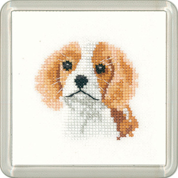 Spaniel Puppy Dog Coaster Kit