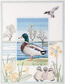 Mallard Duck Cross Stitch and Blackwork