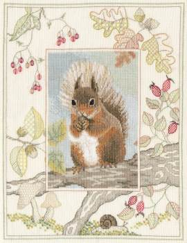 Red Squirrel Cross Stitch and Blackwork