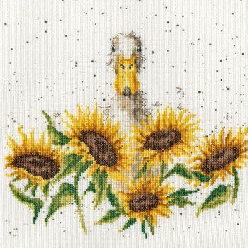 Sunshine - Hannah Dale