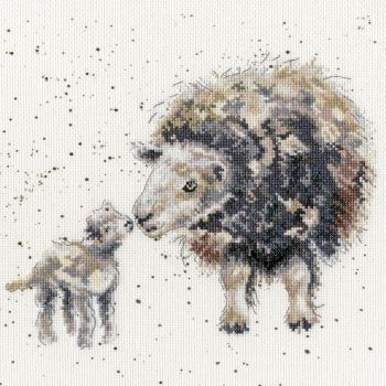Ewe And Me - Hannah Dale