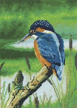 Kingfisher Cross Stitch - Nigel Artingstall