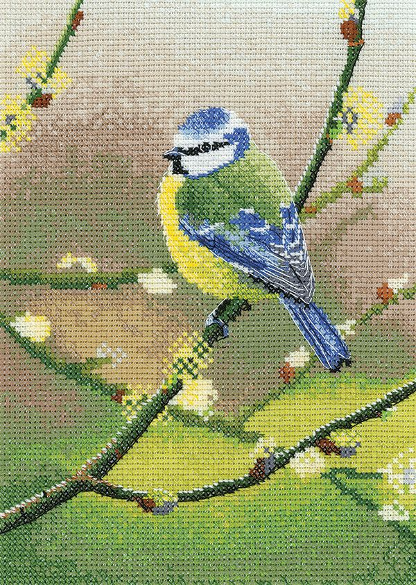 Blue Tit Bird Cross Stitch - Nigel Artingstall