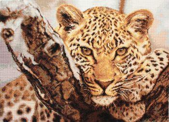 Leopard - Petit Point Kit - Luca-S