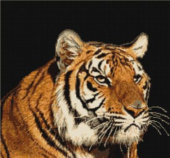 Tiger - Petit Point Kit - Luca-S