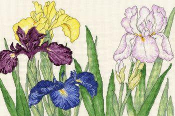 Iris Blooms - Floral Cross Stitch