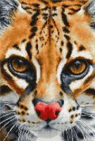 Leopardus Pardalis Ocelot Cross Stitch - Luca-S