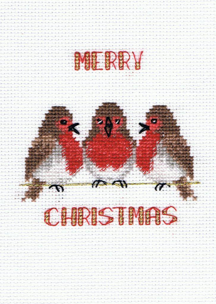 Robin Trio - Christmas Card