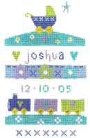 Birth Baby Boy Sampler