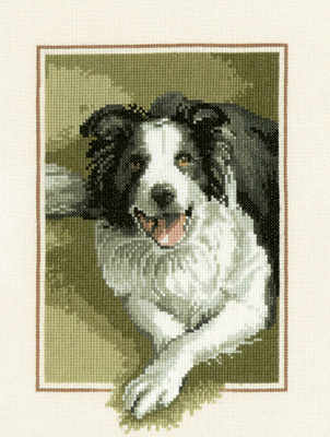 Border Collie Cross Stitch - John Stubbs