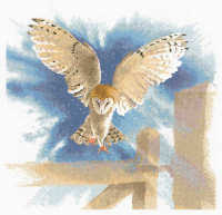 Owl in Flight - John Clayton Cross Stitch