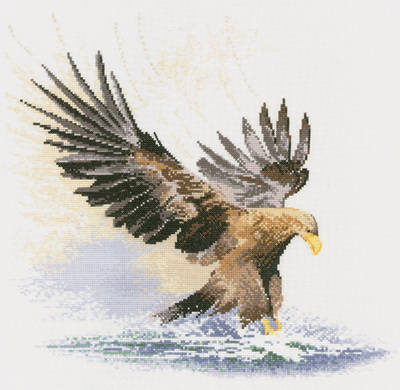 Eagle in Flight - John Clayton Cross Stitch