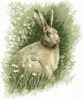 Brown Hare Cross Stitch Kit  - John Stubbs