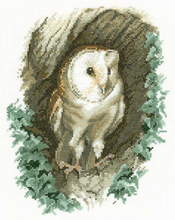 Barn Owl Cross Stitch Kit  - John Stubbs