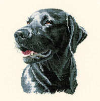 Chester - Animal Portraits Cross Stitch - Heritage Crafts