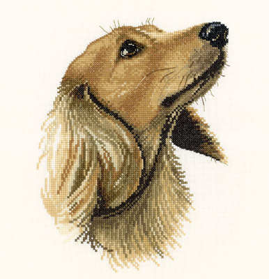 Jasper - Animal Portraits Cross Stitch - Heritage Crafts