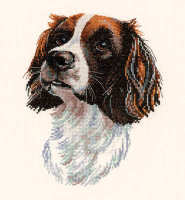 Samuel - Animal Portraits Cross Stitch - Heritage Crafts
