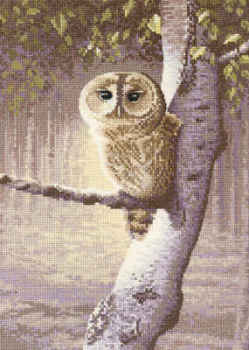 Warwick Higgs Cross Stitch - Night Watchman Owl